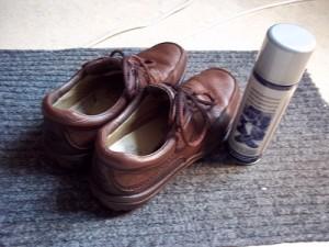 Dora schoenen waterdicht klein