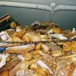 voedsel weggooien