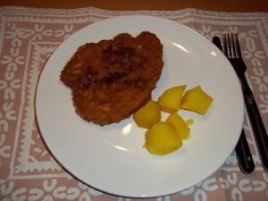 Dora schnitzel chipspaneer 3 klein