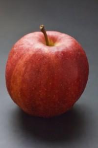 Appel rood Neddis 2015