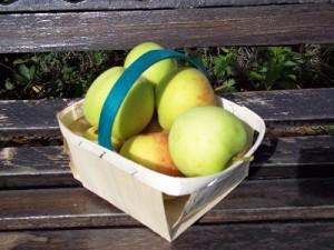 Dora appels klein