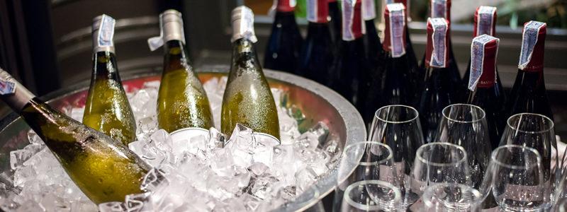 Dora wijn frapperen