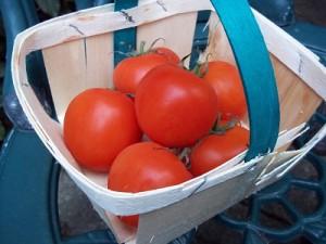 Dora tomatenjam 1