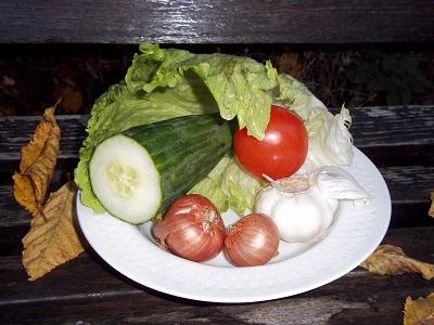 Dora Syrische salade 1