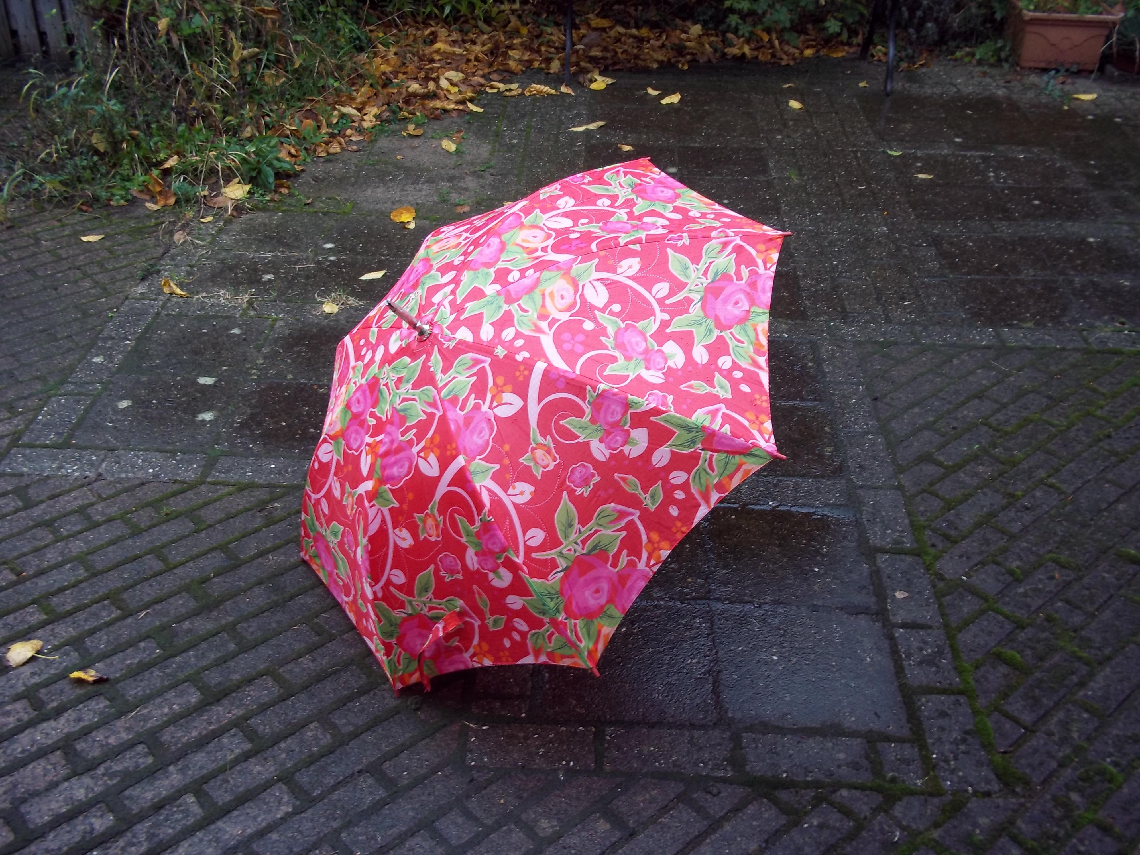 Dora wijsheden druilerig paraplu