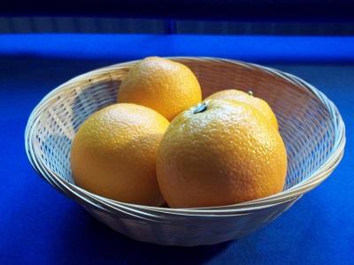 Dora sinaasappelsalade 1