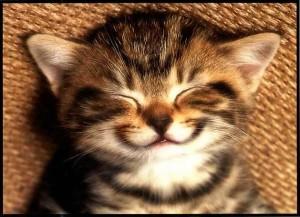 Dora glimlach