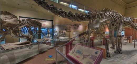 Dora museum
