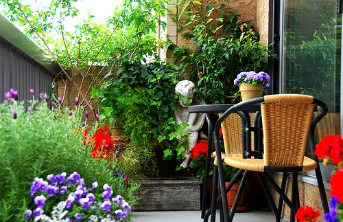 Dora balkontuin
