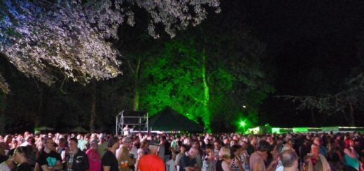 Dora Ploegfestival 1