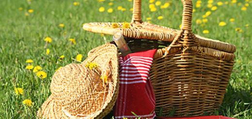 dora-picknick
