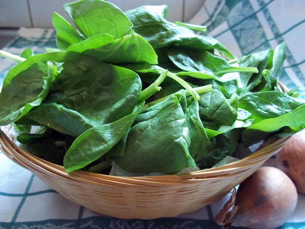 dora-spinazie-met-ei-1