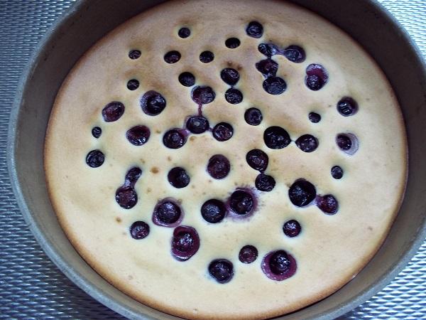 dora-taart-blauwe-bessen-2