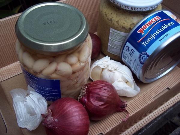 dora-bonen-tonijn-salade-1