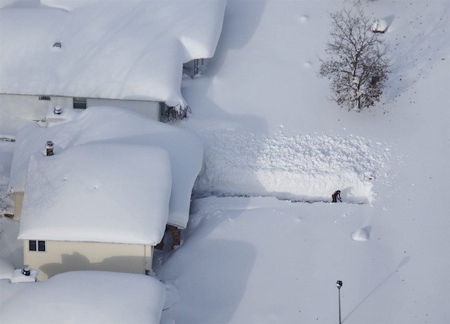 dora-ingesneeuwd
